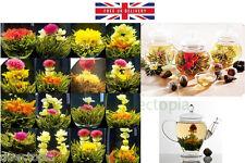 10 X BLOOMING FLOWER FLOWERING JASMINE GREEN CHINESE TEA BALL