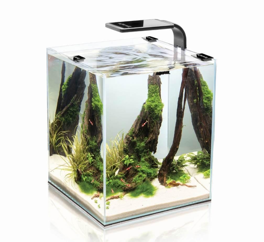 Aquael Shrimp Set 30l Led Shrimp Aquarium Aquarium Complete Shrimps 30x30x35 Cm