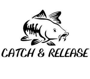 Catch & Release Гјbersetzung