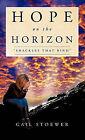 Hope on the Horizon by Gail Stoewer (Hardback, 2011)