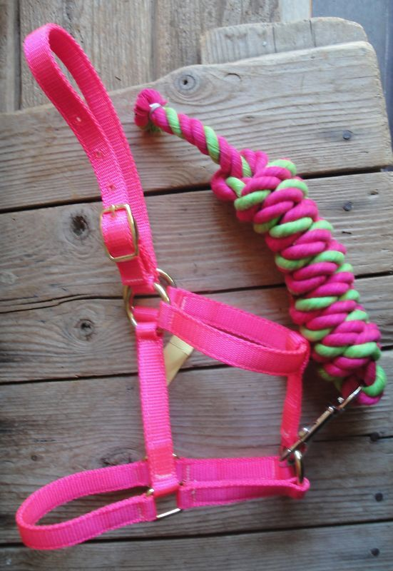 Miniature Horse HOT PINK Halter & Cotton Lead USA made