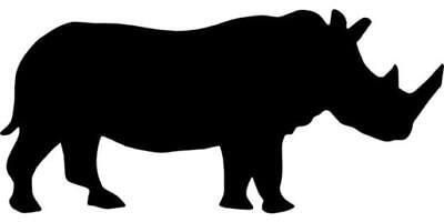 Rhinomusik