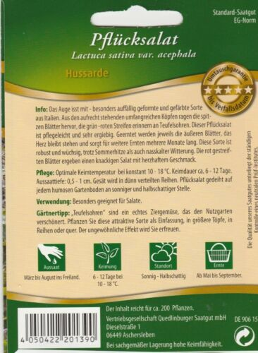 ca Pflücksalat Hussarde Teufelsohrensalat 200  Samen Salat  Saatgut Sämereien