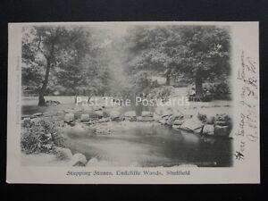 Yorkshire-SHEFFIELD-Endcliffe-Woods-amp-Stepping-Stone-c1902-UB-Postcard-Valentine
