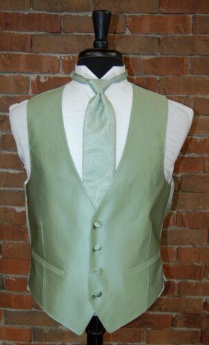 Tie by Flow Formals Mens XL Meadow Sage Dynasty Full Back Tuxedo Vest