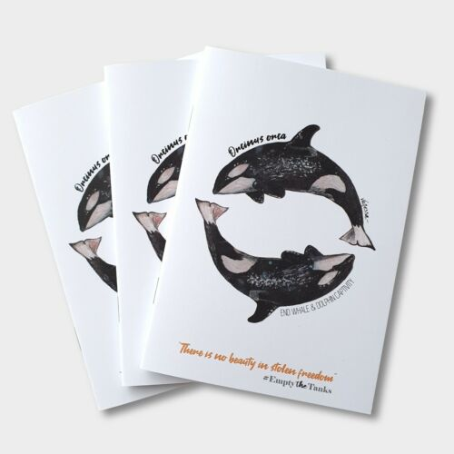 Orca Killer Whale Notebook Wildlife Art Conservation Charity Eco-Friendly Jotter