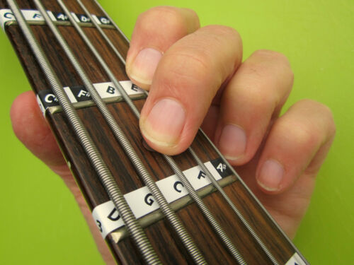 Online Lessons 5-STRING BASS GUITAR FRETBOARD NOTE LABELS Learn Fret Stickers