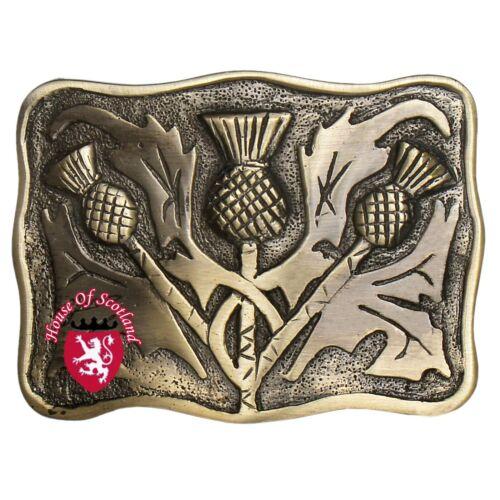 Hs Schottisch Kilt Gürtel Schnalle Antik Keltisch Serpent Hochland Distel