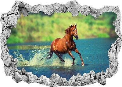 HORSE WALL STICKER 3D LOOK BEDROOM LOUNGE NATURE ANIMAL WALL DECAL Z801