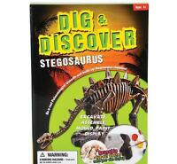 12 In Stegosaurus Excavation Kit Fossil Dig Paint Dinosaur Bones Display Dpste