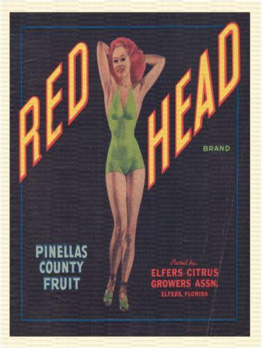 "RED HEAD BRAND FLORIDA FRUIT LABEL 9/"" x 12/"" ALUMINUM Sign"