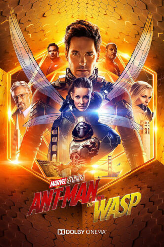 Z88 Ant Man and the Wasp Hot Paul Rudd Movie 2018 Dolby Silk Poster 36x24 40x27