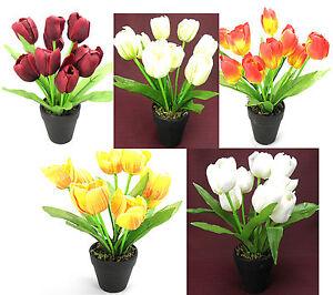 kunstblumen tulpe 23cm k nstliche tulpen mit topf blumen kunstblumen blumentopf ebay. Black Bedroom Furniture Sets. Home Design Ideas