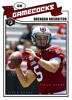 ACEO BRENDAN NOSOVITCH SOUTH CAROLINA GAMECOCKS CUSTOM HAND MADE ART CARD
