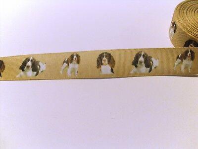 Ripsband Bordüre Borte Hunde Dogs Hund 22 mm Springer Spaniel