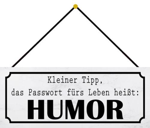 Blechschild Passwort Leben Humor Metallschild 27x10 cm Deko tin sign mit Kordel