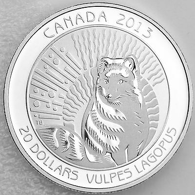 2013 Canada Untamed Arctic Fox Silver Proof $20 Coin in Box w//COA