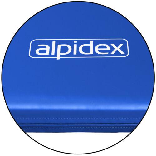 ALPIDEX Leichtturnmatte Turnmatte Matte mit Lederecken 200 x 125 x 8 cm RG 80