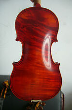 4/4 violin Maggini model nice tone  one piece back violin