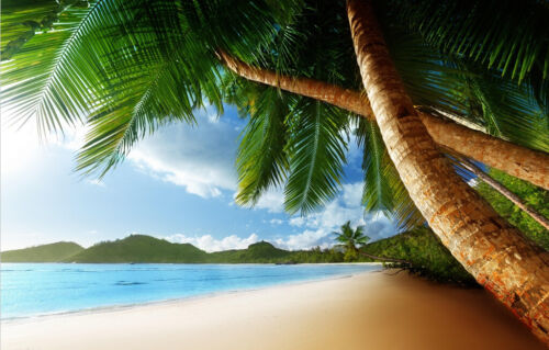 Tropical Beach Photo Wallpaper Mural Poster Giant Wall Decor Pre-pasted BZ245