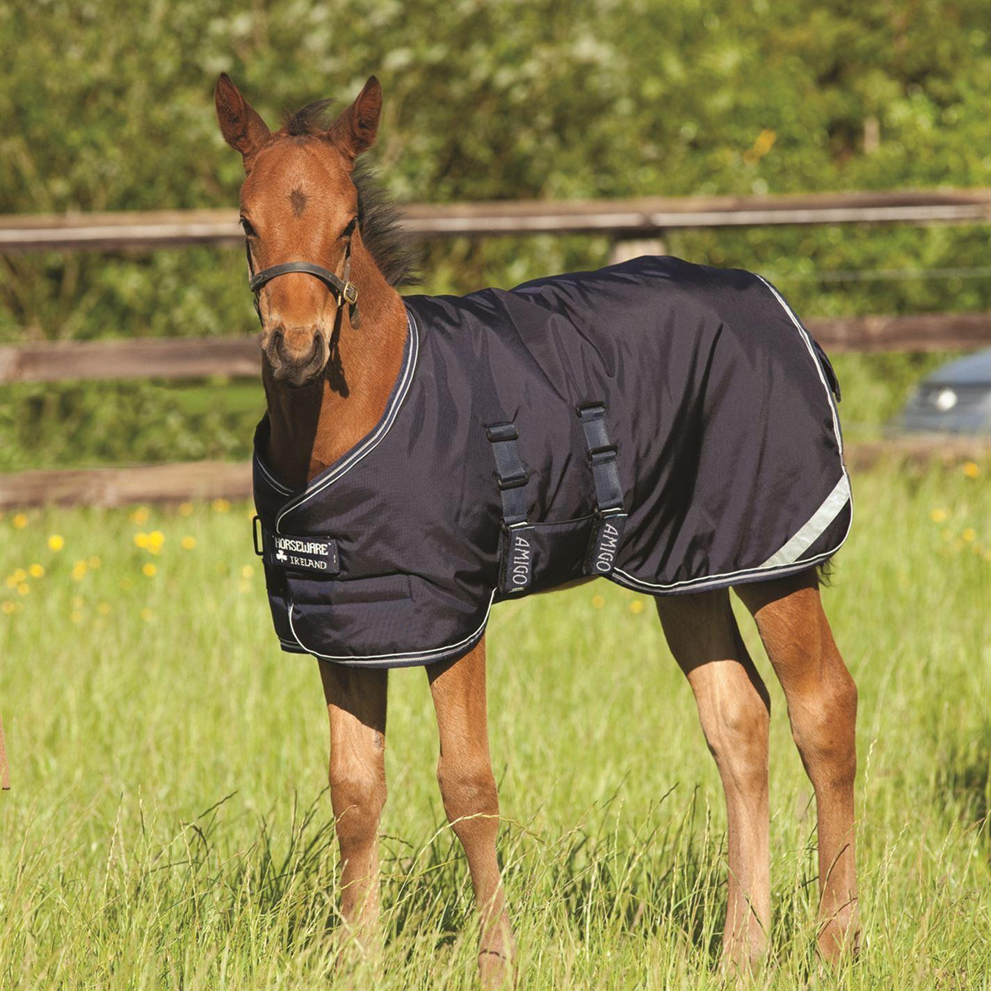 AMIGO Puledro Tappeto accessori da equitazione COPERTE LENZUOLA