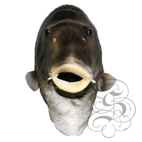 Latex Protection Complète Aquatique Animal or Poisson Dauphin Manchot Clown