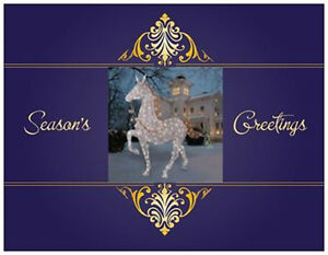 20-CHRISTMAS-Lighted-HORSE-Lawn-HOLIDAY-Decoration-Greeting-Post-Cards-Card
