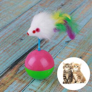 Arrival-Durable-Pet-Cat-Toys-Mimi-Favorite-Tumbler-Mouse-Catch-Cats-Supplies-RK
