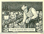 Macedonia Récolte TOBACCO harvest at night HISTORY HISTOIRE DU TABAC CARD 30s