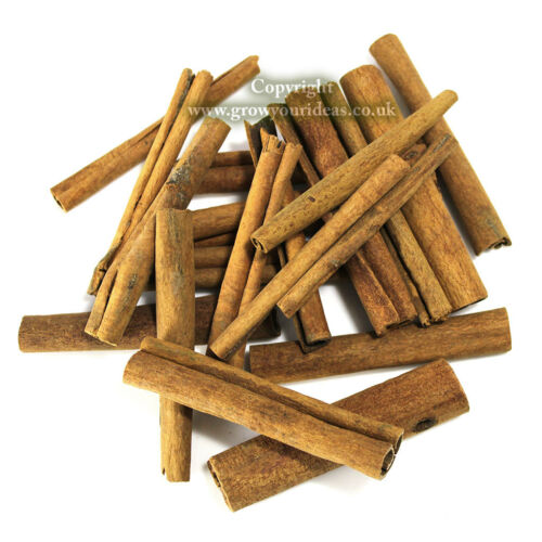 10 x 8cm cinnamon sticks for Christmas Decorations /& other Crafts