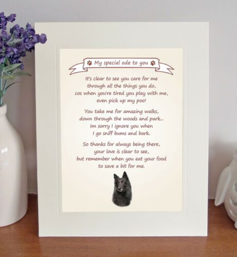 Belgian Shepherd Dog Thank You FROM THE DOG 8 x 10 Picture//10x8 Print Fun Gift
