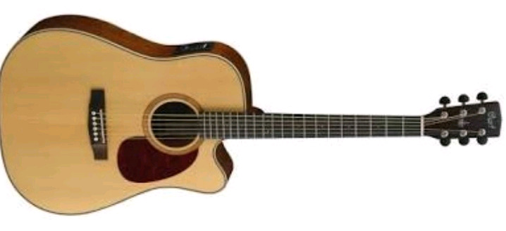 Acoustic Guitar Wanted, Cort MR710, 720