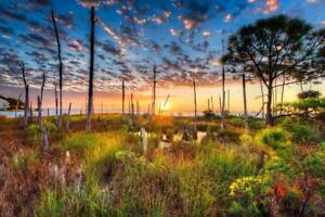 Sunrise-Over-Shalimar-Florida-Photo-Art-Print-Poster-24x36-inch