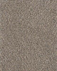 Dreamweaver 35 oz carpet Mississauga / Peel Region Toronto (GTA) Preview