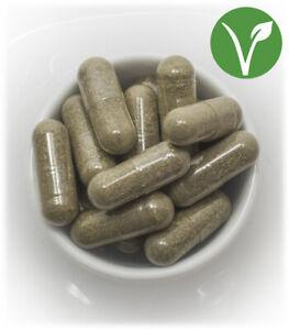 GUARANA 400 gélules dosées à 500 mg l/'unité