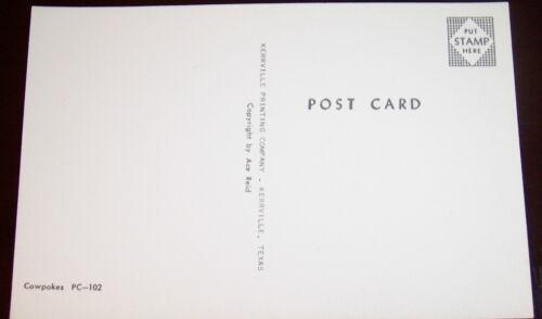 ACE REID/'S COWPOKES VINTAGE 1960/'s COWBOY POSTCARD MINT CONDITION FREE SHIPPING