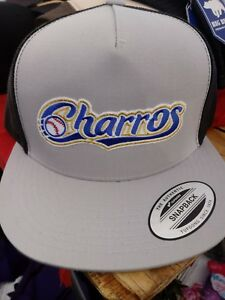 Image is loading CHARROS-DE-JALISCO-HAT-MESH-TRUCKER-SILVER-BLACK- 2319d522a579