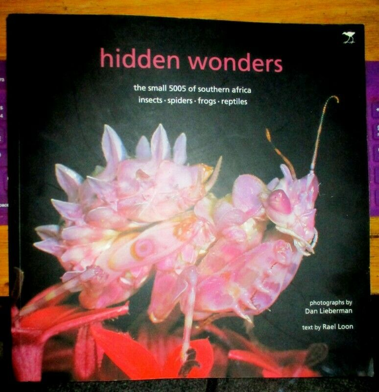Hidden Wonders . The Small 5005 of Southern Africa: Insects, Spiders, Frogs, Reptiles