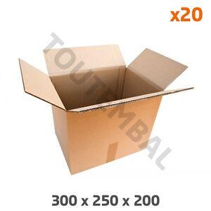 Carton double cannelure 300 x 250 x 200 mm (par 20)