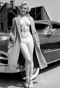 Vintage-Pin-Up-Queen-Photo-152-Oddleys-Strange-amp-Bizarre