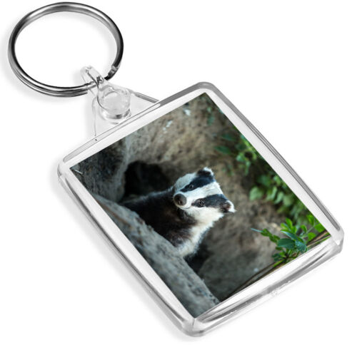 Badger Sett Keyring British Wildlife Wild Animal Keyring Gift #15810