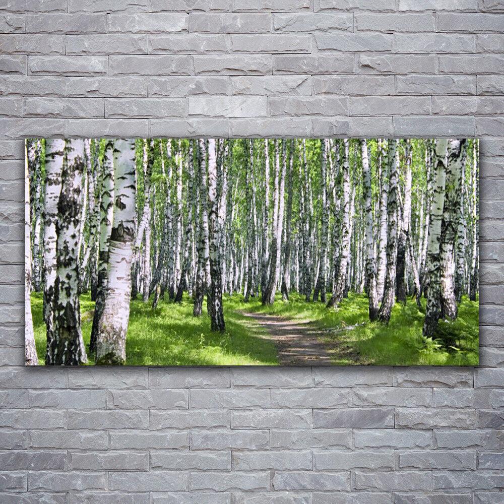 Photo sur toile Tableau Image Impression 120x60 Nature Forêt Sentier