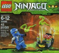 Lego Ninjago 30085 Jumping Snakes Jay Zx Blauer Ninja Polybag Promo Beutel