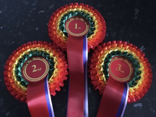 1-4 or 1-6  in quality single faced satin. 1-3 Details about  /Rainbow Themed 4 Tier Rosettes