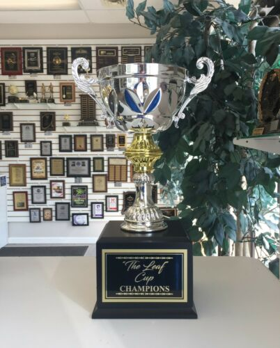 FANTASY HOCKEY 16 YEAR PERPETUAL AWARD GOLD /& SILVER METAL CUP TROPHY M*CMC205S