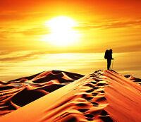 3d Gehen Wüste 866 Fototapeten Wandbild Fototapete Bild Tapete Familie Kinder