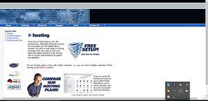 Beautifull Web Hosting Template + Website Free Installation
