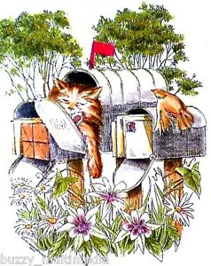 Cat-Shirts-Sleepy-Kitty-Kat-in-Mail-Box-garden-amp-flowers-womans-tee-Sm-5X