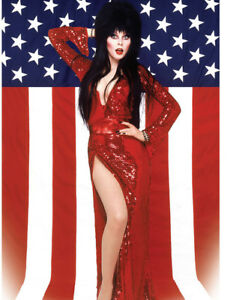 Cassandra-Peterson-aka-Elvira-Mistress-of-the-Dark-UNSIGNED-photograph-N846