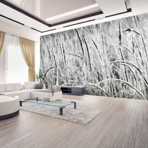 Papier peint toile en herbe-papier peint papiers peints photos pour le salon fdb44